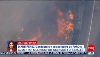 Continúan Labores Para Contener Incendio En California Aumenta La Cifra De Muertos Incendios Forestales En California Incendios Forestales California