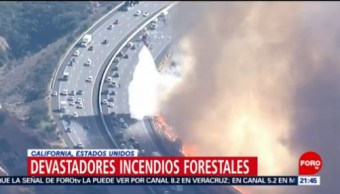 Suman 76 muertos por incendios en California, Estados Unidos (EU), Donald Trump, Incendios forestales, California,