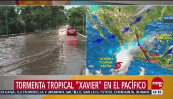 Tormenta Xavier Fortalece Costas Colima Jalisco Tormenta Tropical Xavier