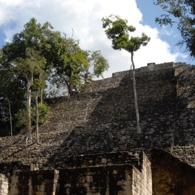 Calakmul, ciudad maya con más de 120 estelas encontradas
