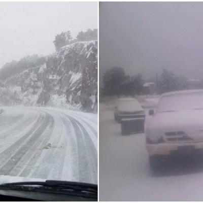 FOTOS y VIDEO: Impactante caída de nieve en Chihuahua y Sonora