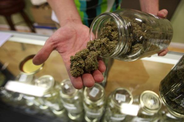 Nueva Zelanda: Referéndum sobre legalización de la marihuana