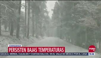 Frente Frío Deja Bajas Temperaturas En Coahuila