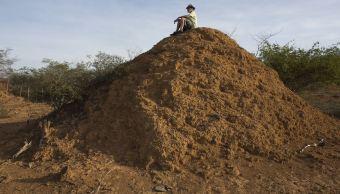 Gigantescos montículos de tierra creados por termitas