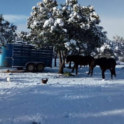 Frente frío 21 llegará al país la madrugada de este viernes