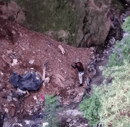 Rescatan a perro en barranca de Álvaro Obregón. (SSC)