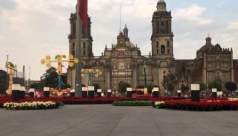 Zócalo vuelve a los 40 estrena jardín de nochebuena