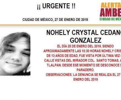 Alerta Amber: Ayuda a localizar a Nohely Crystal Cedano González