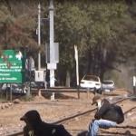 FOTO Bloqueo CNTE paraliza 300 trenes en Michoacán / 28 enero 2019 Michoacán