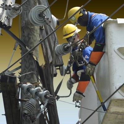 Comisión Federal de Electricidad va contra ladrones de luz