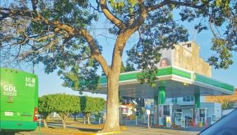 desabasto combustible afecta servicio público jalisco