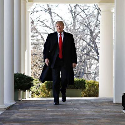 Trump ve negociación difícil con demócratas para financiar su muro