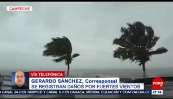 Foto: Frente frío número 31 provoca fuerte turbonada en el sur de México, 27enero 2019