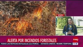 Foto, 26 enero 2019, Hay alerta en Sonora por la propagación de incendios forestales