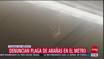Metro CDMX retira enormes arañas en estación Morelos