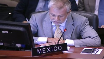 Foto: El embajador de México ante la Organización de Estados Americanos, Jorge Lomonaco, 24 enero 2019