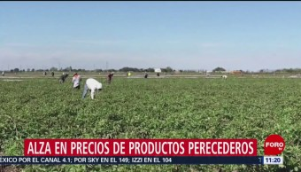 Escasez de diésel y heladas afecta precios de productos básicos
