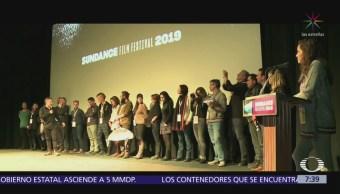 'Sea of Shadows', lucha por la vaquita marina llega a Sundance