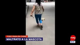 Todo Pasa En China: Maltrato a la mascota