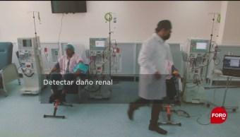 Foto:UNAM descubre método para detectar daños renales sin biopsias,27enero 2019