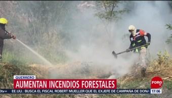 FOTO: Aumentan incendios forestales en Guerrero, 17 febrero 2019