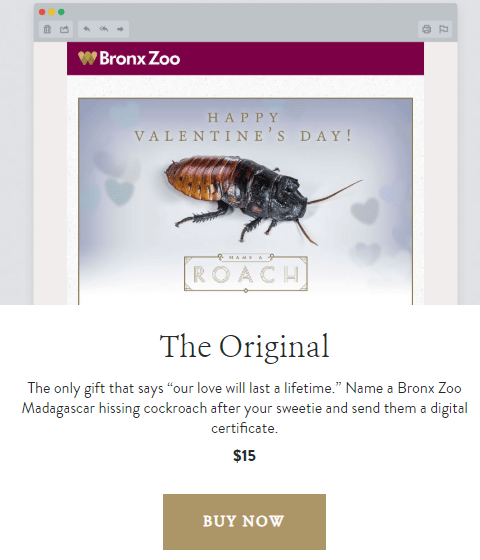 FOTO Certificado del Bronx Zoo por dar nombre de tu pareja a una cucaracha / Bronx Zoo 14 febrero 2019