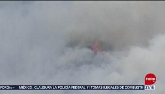FOTO: Incendio controlado en un 90 por ciento en Arteaga, Coahuila, 24 febrero 2019