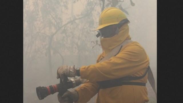 Foto: Aumentan los incendios forestales en Veracruz, 20 de febrero 2019. Twitter @CONAFOR