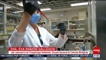 Foto: IPN Erradica Células Virus Papiloma Humano 8 de Febrero 2019