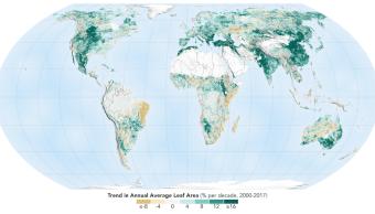 Hoy Tierra más verde que hace 20 años NASA 14 febrero 2019