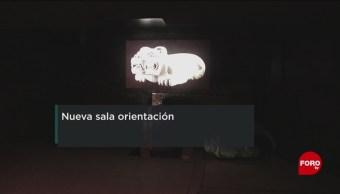 FOTO: Reinauguran la Sala de Orientación del Museo Nacional de Antropología, 17 febrero 2019