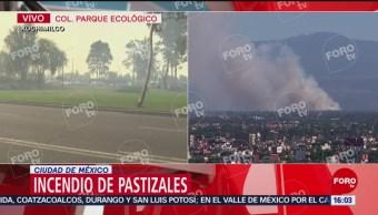 Foto: Viento dificulta combate a incendio en Xochimilco