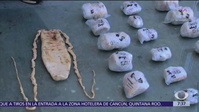 Acciones legales impactan tráfico de totoaba en México y China