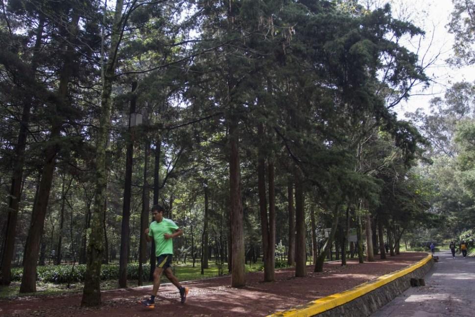 Foto Ocho bosques de la Ciudad de México que debes conocer 12 marzo 2019
