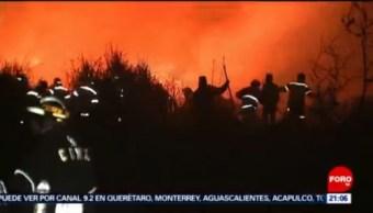 Foto: Incendios Forestales Xochimilco Provocados 12 de Marzo 2019
