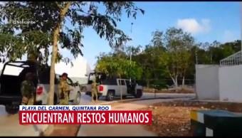 Encuentran restos humanos en Playa del Carmen, Quintana Roo