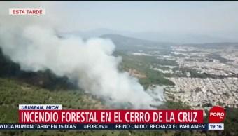 Foto: Incendio Forestal Cerro Cruz Michoacán 29 de Marzo 2019