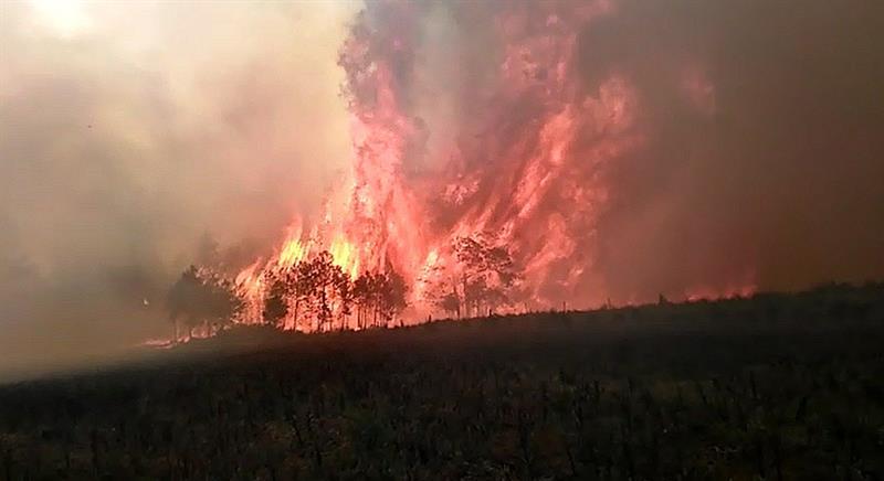 Foto: Incendio forestal en Las Vigas, Veracruz, 11 de marzo 2019. EFE