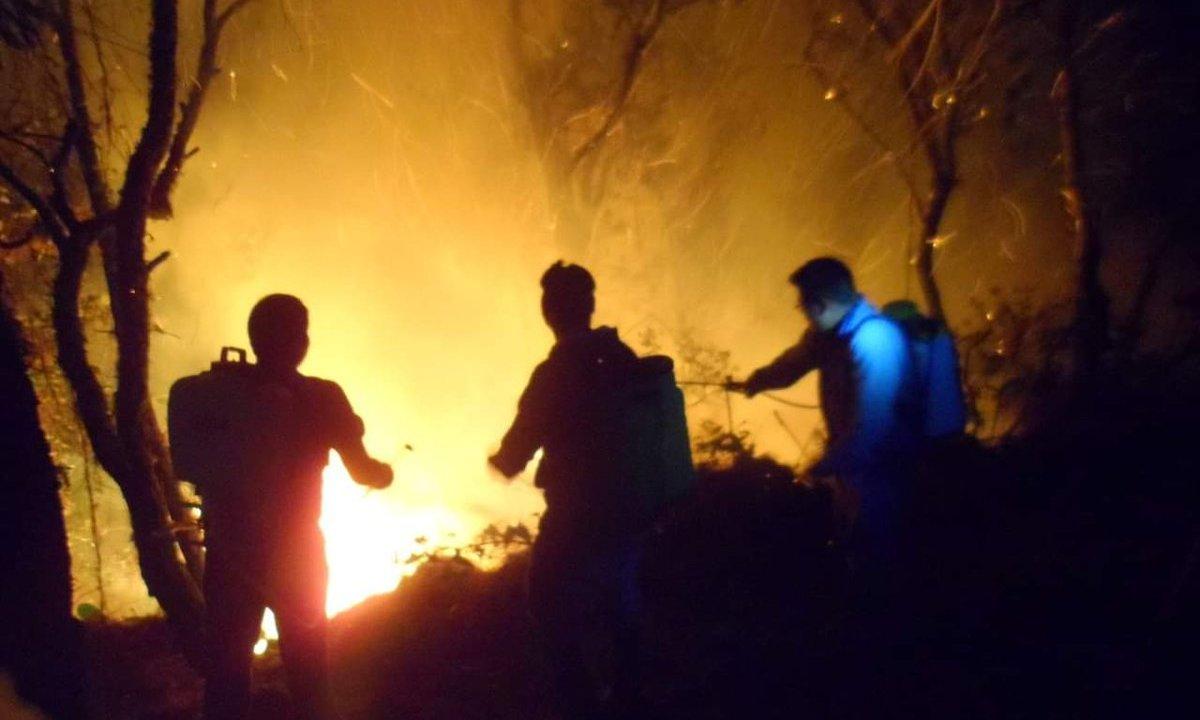 Foto: Incendios forestales consumen viviendas en la costa de Oaxaca 28 marzo 2019
