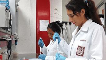 Foto Egresadas del IPN crean bebida energética a base de moringa 11 marzo 2019