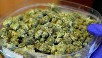 marihuana-foto