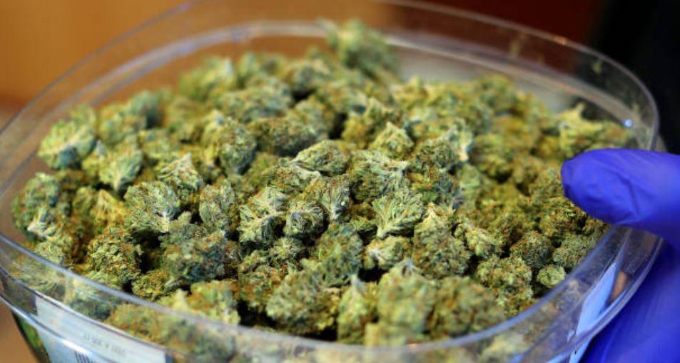 foto marihuana