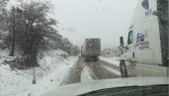 Foto: Un descenso en la temperatura originó la caída de nieve en carretera de Chihuahua, 10 marzo 2019