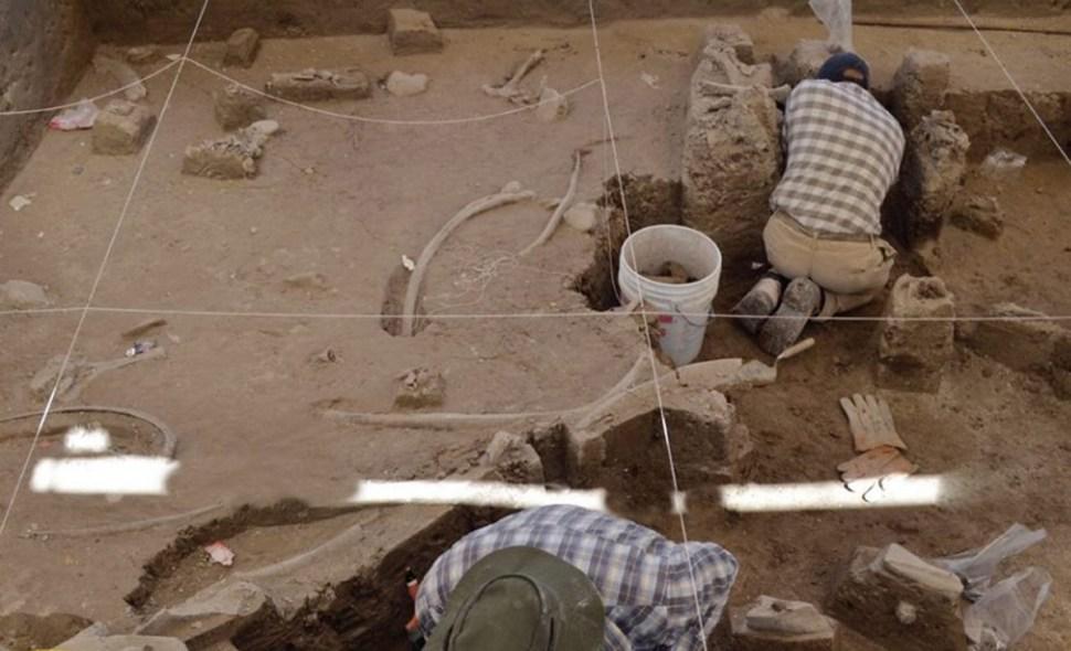 foto restos de mamut tultepec 2