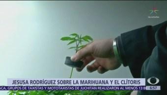 Senadora de Morena pide no satanizar la marihuana