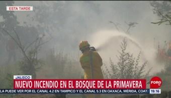 Foto: Alerta Atmosférica Incendio Bosque Primavera Jalisco 12 de Abril 2019