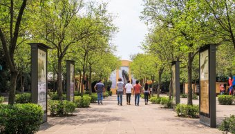 FotoAMLO anuncia Complejo Cultural en Bosque de Chapultepec 2 abril 2019