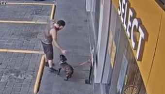 Video muestra robo de perro 'Bayito'