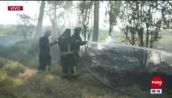Bomberos trabajan en incendio de pastizales en Xochimilco