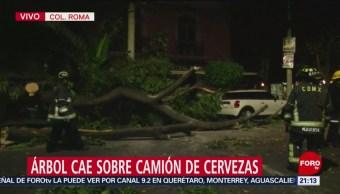 Foto: Cae Árbol Camión Cervezas Colonia Roma Cdmx 16 de Abril 2019